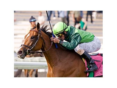 Bay to Bay won the American One Thousand Guineas at Arlington Park in her most recent start.