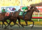 Midnight Ballet winning the Sharp Cat Stakes.