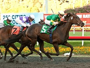 Midnight Ballet is the first stakes winner for Midnight Lute.