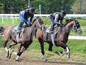 Palace Malice and My Miss Aurelia at Saratoga August 16, 2014.
