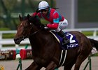 Earnestly wins the Breeders' Cup Challenge Japan (Takarazuka Kinen).