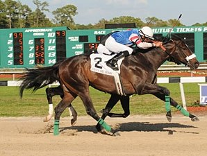 Tampa Bay Downs Handle Declines 2.7%