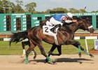 Musket Man Pulls Out Tampa Bay Derby Win