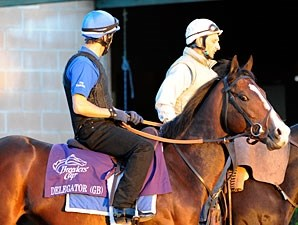 Delegator at the 2009 Breeders' Cup