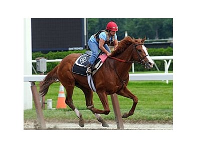 Shackleford is among those nominated to the Clark Handicap.