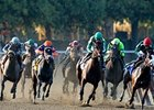 Field Size: Two Dozen Tracks Top 8 Per Race