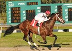 Rule Heads Lineup for Florida Derby