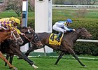 "Jenny Wiley winner Rutherienne seeks her 10th win in the Diana.<br><a target=""blank"" href=""http://www.bloodhorse.com/horse-racing/photo-store?ref=http%3A%2F%2Fpictopia.com%2Fperl%2Fgal%3Fprovider_id%3D368%26ptp_photo_id%3D4177509%26ref%3Dstory"">Order This Photo</a>"