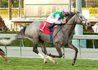 Filimbi Avoids Trouble in Eventful Goldikova