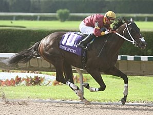 Big Drama wins the 2010 Smile Sprint Handicap.