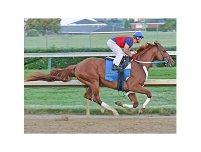Curlin works five furlongs at Churchill Downs on June 23.