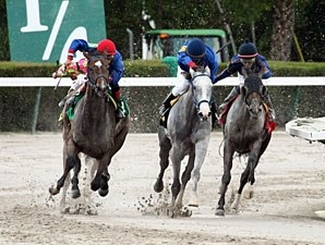Street Girl wins the 2013 Calder Oaks.