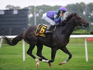 Grand Couturier Romps in Turf Classic