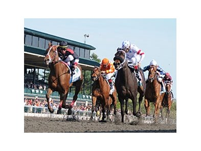 "Shotgun Gulch (left) flies home to nip Amen Hallelujah in the Vinery Madison.<br><a target=""blank"" href=""http://www.bloodhorse.com/horse-racing/photo-store?ref=http%3A%2F%2Fpictopia.com%2Fperl%2Fgal%3Fprovider_id%3D368%26ptp_photo_id%3D9491492%26ref%3Dstory"">Order This Photo</a>"
