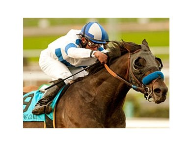 "Twirling Candy<br><a target=""blank"" href=""http://www.bloodhorse.com/horse-racing/photo-store?ref=http%3A%2F%2Fpictopia.com%2Fperl%2Fgal%3Fprovider_id%3D368%26ptp_photo_id%3D9346088%26ref%3Dstory"">Order This Photo</a>"