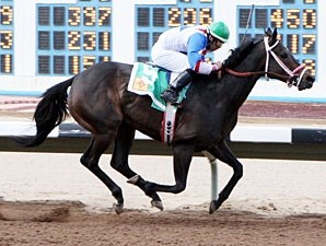 Devon's Spirit wins the 2013 Russell and Hellen Foutz Distaff Handicap.