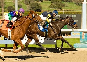 Indian Blessing holds off Golden Doc A in the Santa Ynez.