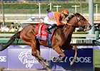 "Beholder makes her first start of 2013 in the Santa Ynez Stakes.<br><a target=""blank"" href=""http://photos.bloodhorse.com/BreedersCup/2012-Breeders-Cup/Juvenile-Fillies/26130210_XSj9gp#!i=2191312075&k=XfFwBwR"">Order This Photo</a>"