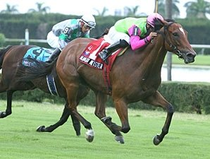 Motovato Tops Full Spend a Buck H. Field