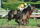 "Quick Wit won an off-the-turf running of the National Museum of Racing Hall of Fame Stakes Aug. 10.<br><a target=""blank"" href=""http://photos.bloodhorse.com/AtTheRaces-1/at-the-races-2012/22274956_jFd5jM#!i=2018011396&k=24PpZTt"">Order This Photo</a>"