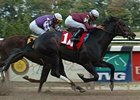 Stevil broke his maiden last Oct. 13 at Belmont Park.