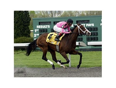 In Lingerie has been confirmed to start in the Kentucky Oaks.