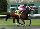 In Lingerie dominates the Bourbonette Oaks at Turfway Park.
