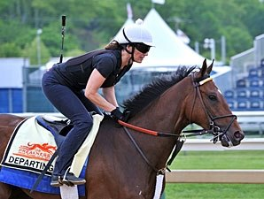 Looking at Fresh Contenders in the Preakness