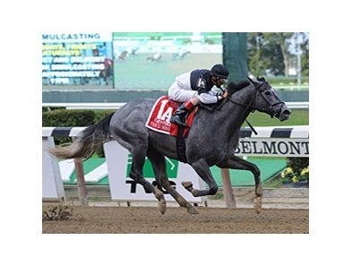 "The Lumber Guy won the 2012 Vosburgh.<br><a target=""blank"" href=""http://photos.bloodhorse.com/AtTheRaces-1/at-the-races-2012/22274956_jFd5jM#!i=2124731388&k=3Z5PqL5"">Order This Photo</a>"