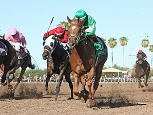 Absolutely Cool wins the 2013 Bienvenidos Stakes.