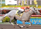 "Delightful Kiss rolls in the Hal's Hope under Calvin Borel.<br><a target=""blank"" href=""http://www.bloodhorse.com/horse-racing/photo-store?ref=http%3A%2F%2Fpictopia.com%2Fperl%2Fgal%3Fprovider_id%3D368%26ptp_photo_id%3D7300629%26ref%3Dstory"">Order This Photo</a>"