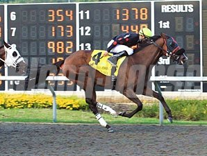 Musical Romance wins the 2011 Presque Isle Masters.