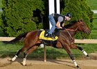 "Mine That Bird and Calvin Borel, shown working on June 1 at Churchill Downs, will feature prominently in ESPN's Belmont coverage.<br><a target=""blank"" href=""http://www.bloodhorse.com/horse-racing/photo-store?ref=http%3A%2F%2Fpictopia.com%2Fperl%2Fgal%3Fprovider_id%3D368%26ptp_photo_id%3D8184986%26ref%3Dstory"">Order This Photo</a>"