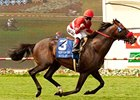 Warren Plots Course for Acclamation's Season