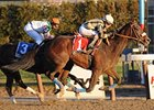 "Researcher, who won last year's Charles Town Classic, faces a full-field in 2010.<br><a target=""blank"" href=""http://www.bloodhorse.com/horse-racing/photo-store?ref=http%3A%2F%2Fpictopia.com%2Fperl%2Fgal%3Fprovider_id%3D368%26ptp_photo_id%3D7061731%26ref%3Dstory"">Order This Photo</a>"