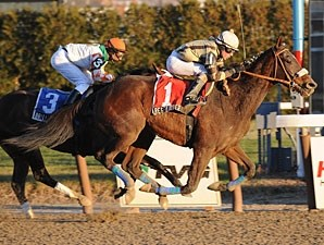 Researcher wins the 2008 Queens County.