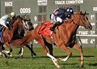 Stormy Lord Easily Repeats in President's Cup