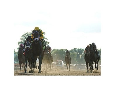 Palace Malice leads the rest of the 3-Year-Old field in the Belmont Stakes.