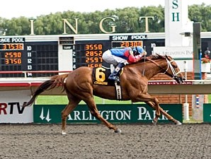 Free Fighter wins the 2011 Stars and Stripes.