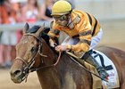 Successful Dan