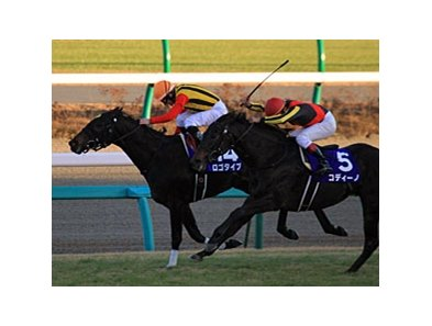 "Logotype winining the Asahi Hai Futurity.<br><a target=""blank"" href=""http://photos.bloodhorse.com/AtTheRaces-1/at-the-races-2012/22274956_jFd5jM#!i=2275742717&k=rwmHKgM"">Order This Photo</a>"