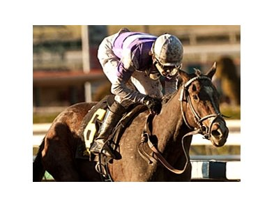 Renee's Titan wins the Santa Ynez Stakes.