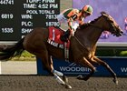 Canadian Champion Filly Tu Endie Wei Dead