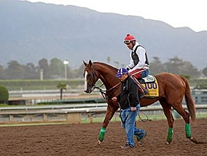 California Chrome - Breeders' Cup 2014.