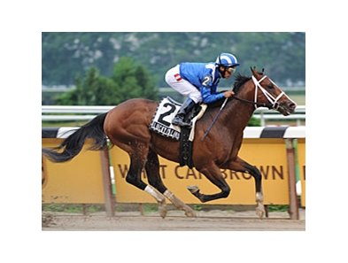 "Lucky Island will try to continue his 2008 win streak in the Forego Stakes.<br><a target=""blank"" href=""http://www.bloodhorse.com/horse-racing/photo-store?ref=http%3A%2F%2Fpictopia.com%2Fperl%2Fgal%3Fprovider_id%3D368%26ptp_photo_id%3D5022883%26ref%3Dstory"">Order This Photo</a>"
