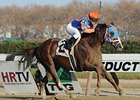 Caixa Eletronica streaks away from the field to win the Fall Highweight Handicap.