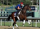 "No Jet Lag<br><a target=""blank"" href=""http://photos.bloodhorse.com/BreedersCup/2013-Breeders-Cup/Breeders-Cup/32986083_QMHXWK#!i=2871191919&k=WVJZgQz"">Order This Photo</a>"