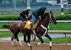 Ky. Derby Trail: Macho Man Was Born to Run