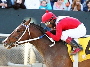 Goods Gone West wins the 2013 Rainbow Stakes.