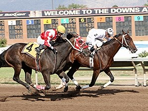 Tulsa Te wins the 2012 Harvest Stakes.